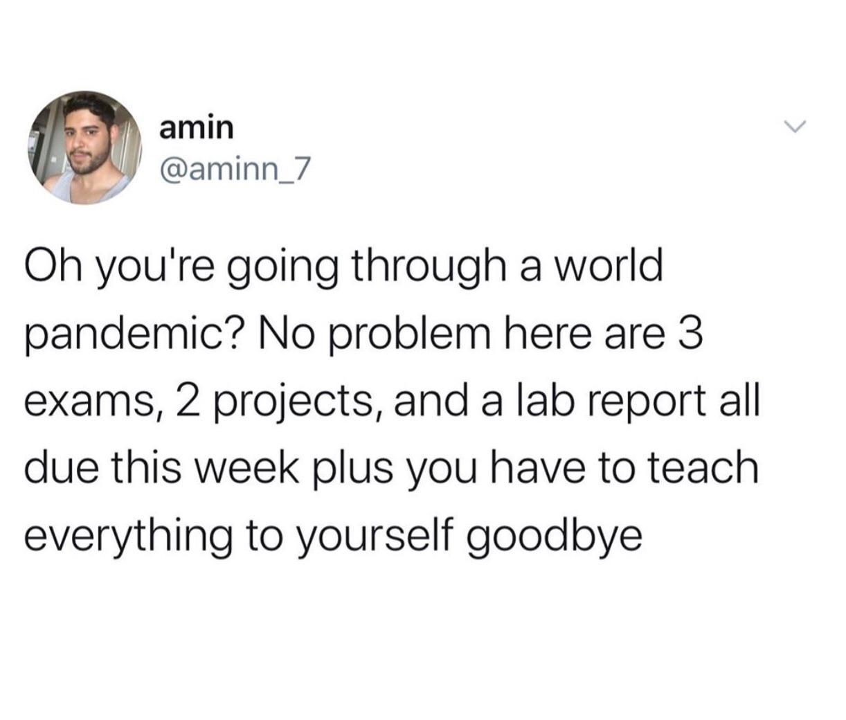 Quarantine Memes - Online Classes